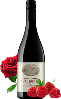 MOTHERVINE PINOT NOIR