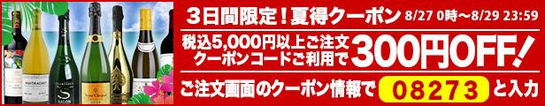 夏得クーポン300円OFF