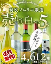 売れ筋白ワインセット