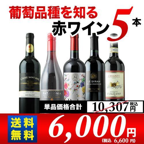 葡萄品種を知る赤ワイン5本