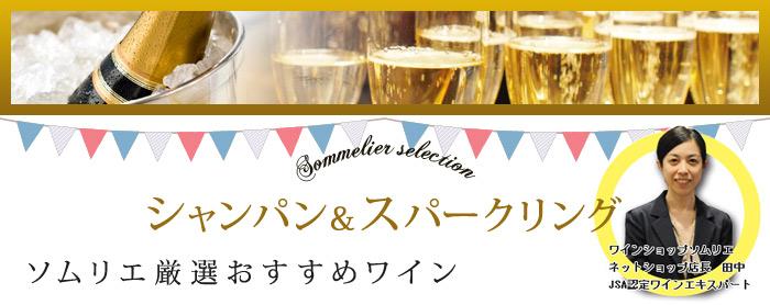 ソムリエ厳選 シャンパン・スパークリングワイン