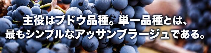 主役はブドウ品種。単一品種とは、最もシンプルなアッサンブラージュである。