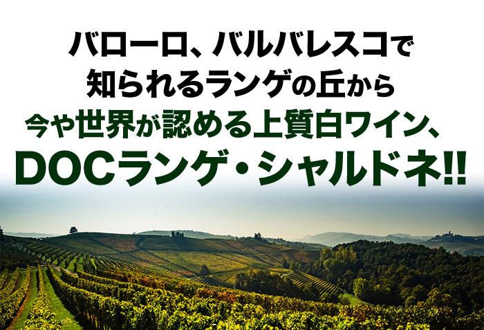 バローロ、バルバレスコで知られるランゲの丘から今や世界が認める上質白ワイン、DOCランゲ・シャルドネ!