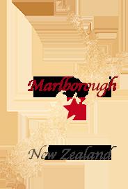 ニュージーランド地図