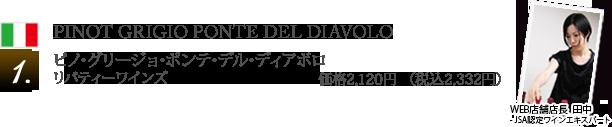 1 ピノ・グリージョ・ポンテ・デル・ディアボロ / リバティーワインズ