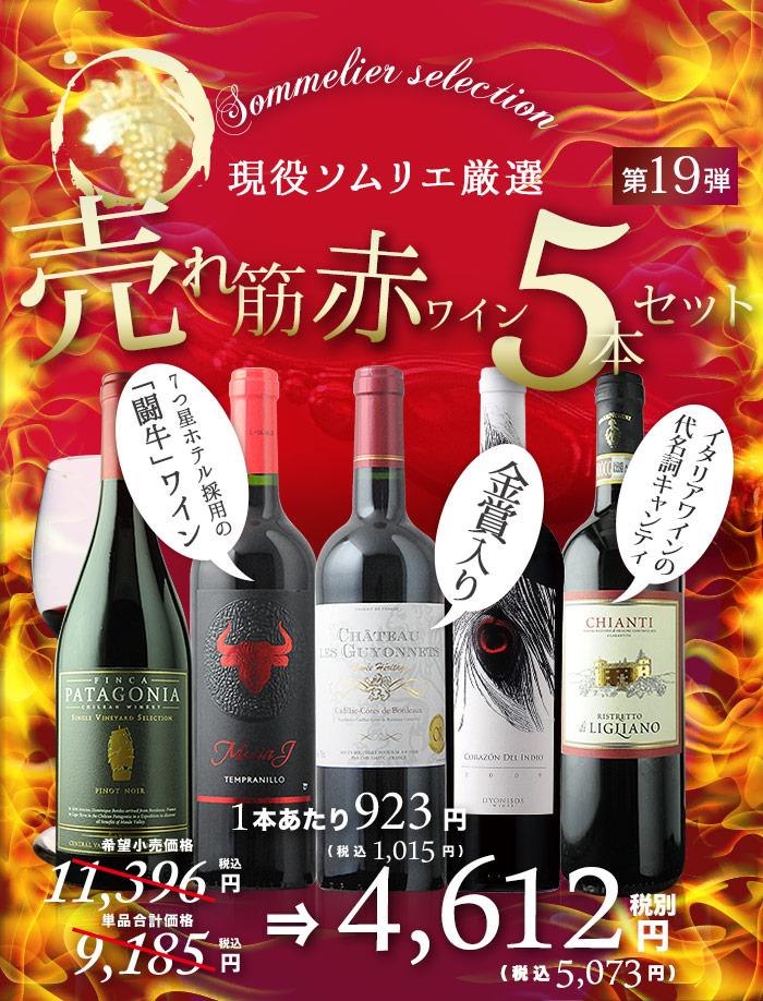 オーパス醸造家が造る本格樽熟成、パーカー89点獲得当たり年、金賞入り、飲みごろ熟成など売れ筋赤ワイン5本セット