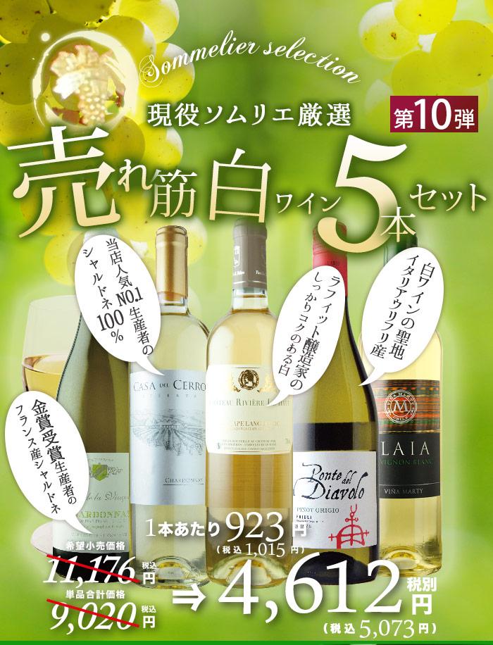 売れ筋白ワイン5本セット
