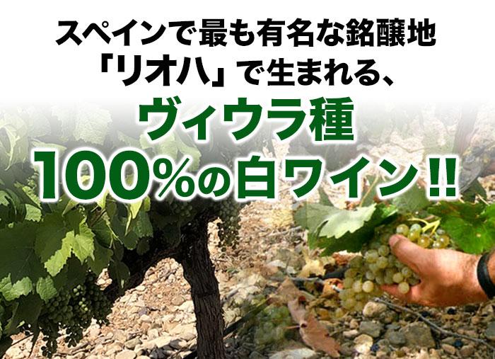 スペインで最も有名な銘醸地「リオハ」で生まれる、ヴィウラ種100%の辛口白ワイン
