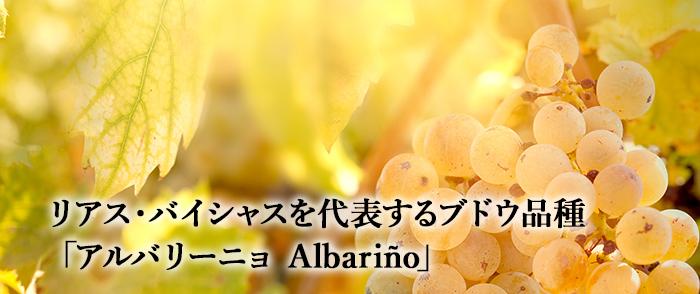 リアス・バイシャスを代表するブドウ品種「アルバリーニョ Albariño」