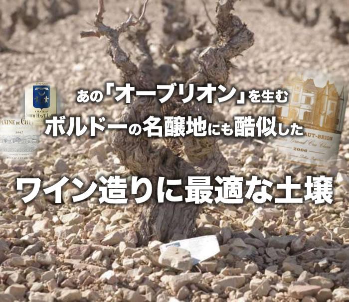 あの「オーブリオン」を生む、ボルドーの名醸地にも酷似した、ワイン造りに最適な土壌